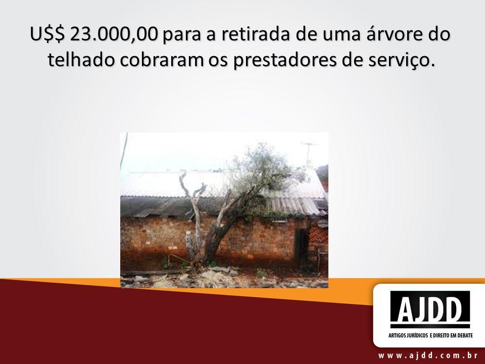 U$$ 23.000,00 para a retirada de uma árvore do telhado cobraram os prestadores de serviço.