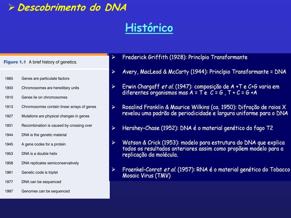 Histórico Descobrimento do DNA