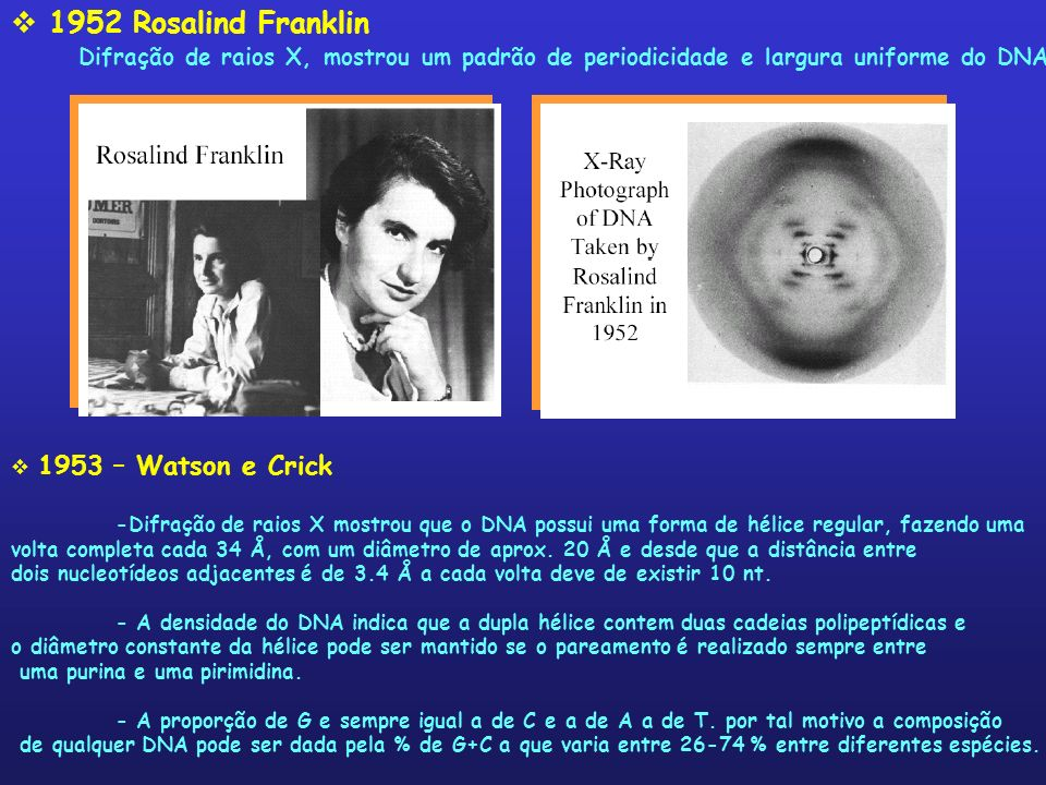 1952 Rosalind Franklin Difração de raios X, mostrou um padrão de periodicidade e largura uniforme do DNA 1953 – Watson e Crick -Difração de raios X mo