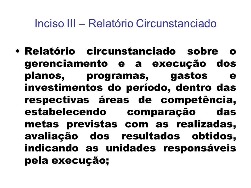 Inciso III – Relatório Circunstanciado Relatório circunstanciado sobre o gerenciamento e a execução dos planos, programas, gastos e investimentos do p