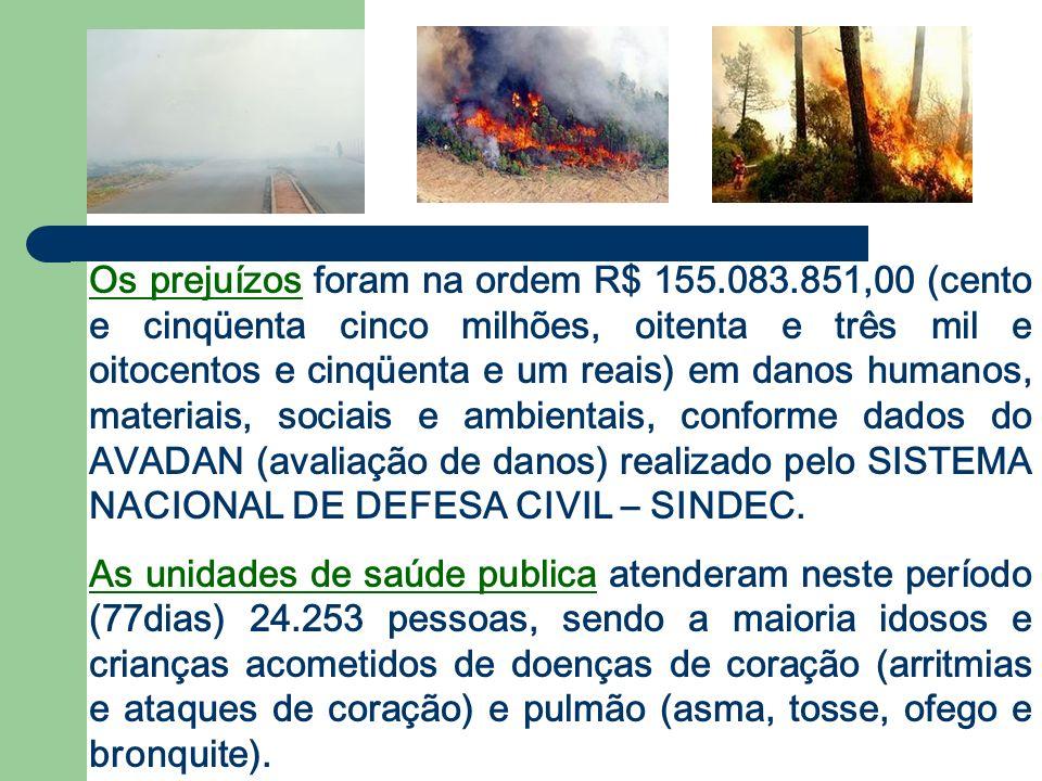 As Florestas encontram-se especialmente fragilizadas, não se recuperaram do intenso impacto sofrido no ano de 2005 e essas áreas são consideradas de alto risco para a ocorrência de novos incêndios.