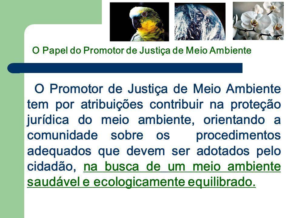 O Papel do Promotor de Justiça de Meio Ambiente O Promotor de Justiça de Meio Ambiente tem por atribuições contribuir na proteção jurídica do meio amb