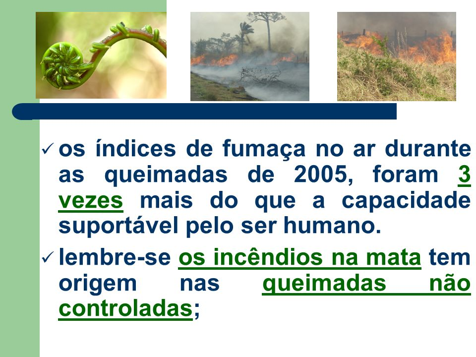 os índices de fumaça no ar durante as queimadas de 2005, foram 3 vezes mais do que a capacidade suportável pelo ser humano. lembre-se os incêndios na