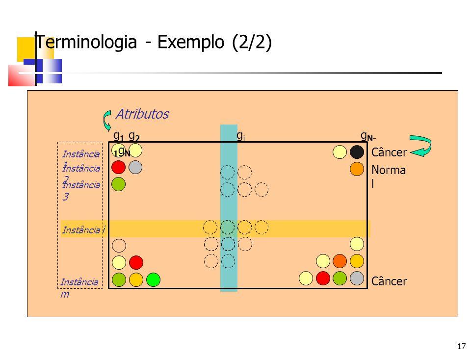 17 Terminologia - Exemplo (2/2) g 1 g 2 g j g N- 1 g N Instância 1 Instância 2 Instância 3 Instância i Instância m Atributos Câncer Norma l Câncer