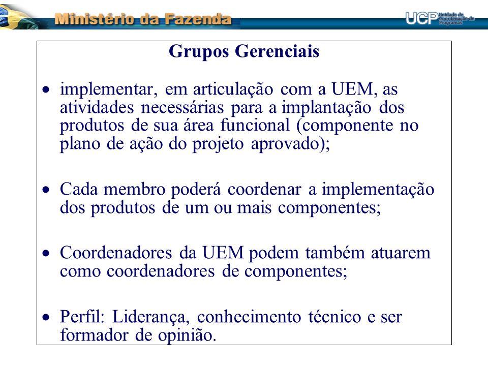Grupos Gerenciais implementar, em articulação com a UEM, as atividades necessárias para a implantação dos produtos de sua área funcional (componente n