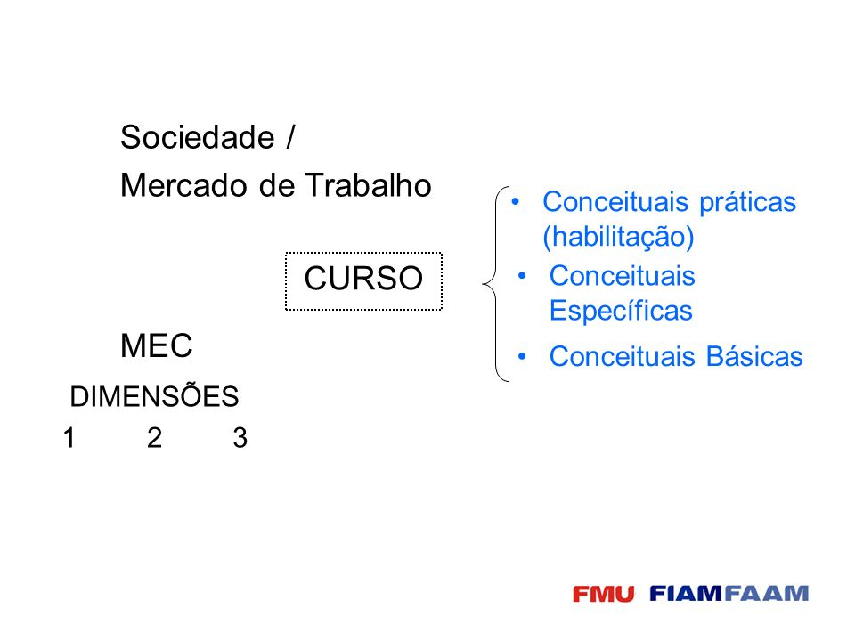 CURSO Sociedade / Mercado de Trabalho MEC DIMENSÕES 123 Conceituais Específicas Conceituais Básicas Conceituais práticas (habilitação)