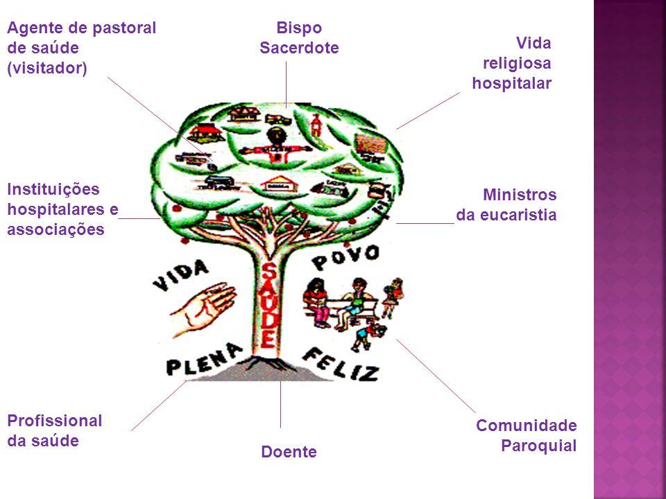 Agente de pastoral de saúde (visitador) Instituições hospitalares e associações Profissional da saúde Doente Bispo Sacerdote Vida religiosa hospitalar