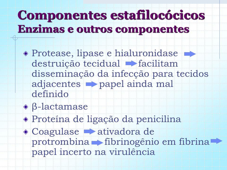 Componentes estafilocócicos Enzimas e outros componentes Protease, lipase e hialuronidase destruição tecidual facilitam disseminação da infecção para