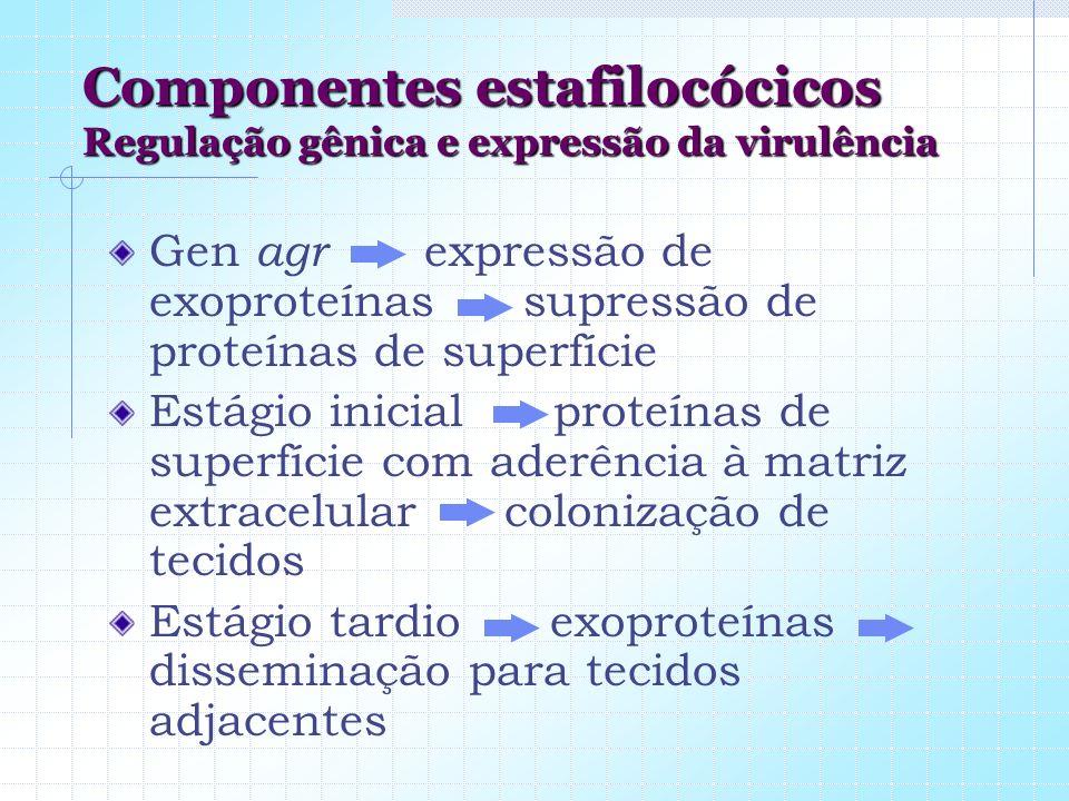 Componentes estafilocócicos Regulação gênica e expressão da virulência Gen agr expressão de exoproteínas supressão de proteínas de superfície Estágio
