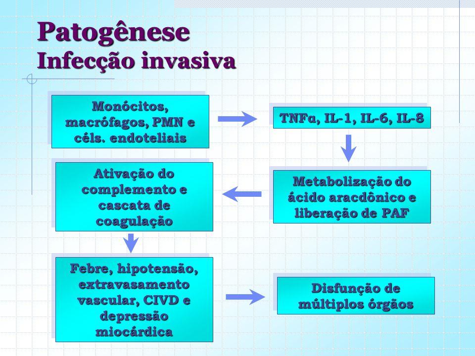 Monócitos, macrófagos, PMN e céls. endoteliais TNFα, IL-1, IL-6, IL-8 Metabolização do ácido aracdônico e liberação de PAF Ativação do complemento e c