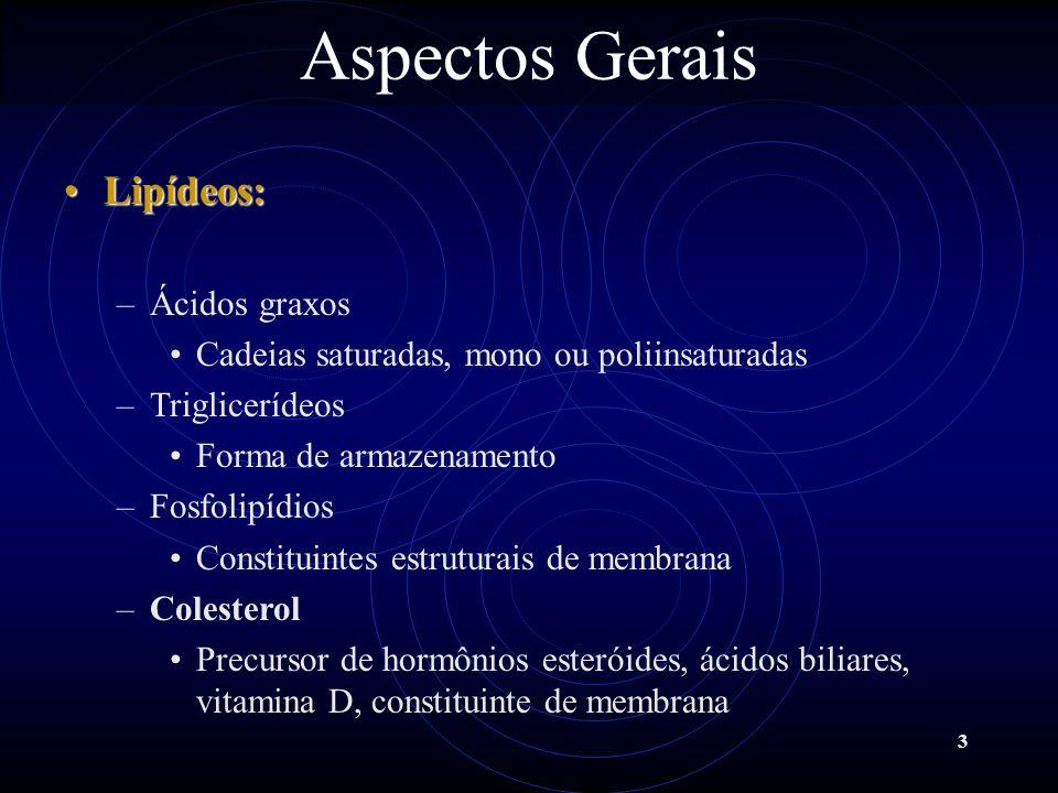3 Lipídeos:Lipídeos: –Ácidos graxos Cadeias saturadas, mono ou poliinsaturadas –Triglicerídeos Forma de armazenamento –Fosfolipídios Constituintes est