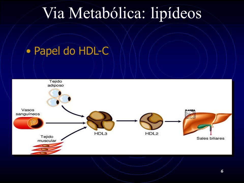 67 Tratamento Farmacológico Ácido Nicotínico Reduz nos hepatócitos a mobilização celular de ácidos graxos, reduzindo a síntese e acoplamento dos TG às apo B-100; Aumenta a degradação celular hepática de VLDL e LDL, reduzindo a concentração plasmática de VLDL-C e LDL-C Diminui o LDL-C de 5-25%, aumenta o HDL em 15-35% e diminui os TG em 20-50%.
