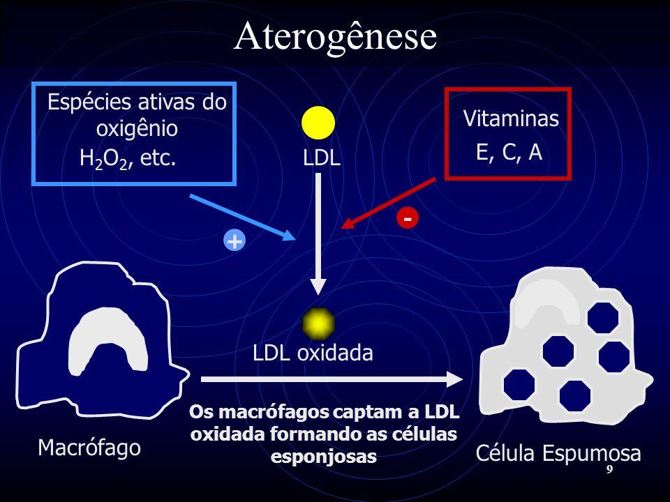 10 Aterogênese As células endoteliais da parede da artéria são injuriadas, ou mecanicamente ou por citotoxicidade pelas LDLs oxidadas ou pelas células esponjosas, causando exposição da área afetada e agregação plaquetária.