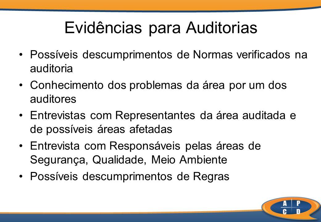 Possíveis descumprimentos de Normas verificados na auditoria Conhecimento dos problemas da área por um dos auditores Entrevistas com Representantes da