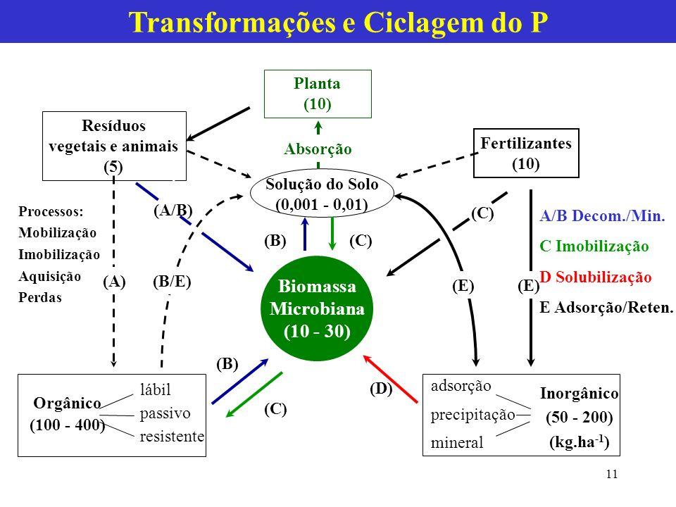 Transformações e Ciclagem do P Planta (10) Resíduos vegetais e animais (5) Fertilizantes (10) Biomassa Microbiana (10 - 30) Solução do Solo (0,001 - 0,01) Orgânico (100 - 400) lábil passivo resistente (B)(C) (D) (C) (B) (A) Absorção adsorção precipitação mineral Inorgânico (50 - 200) (kg.ha -1 ) (E) (C) (A/B) (B/E) A/B Decom./Min.