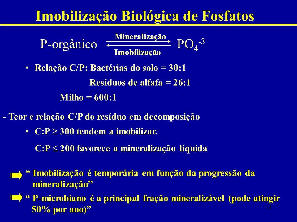 Imobilização Biológica de Fosfatos P-orgânico PO 4 -3 Mineralização Imobilização - Teor e relação C/P do resíduo em decomposição C:P 300 tendem a imobilizar.