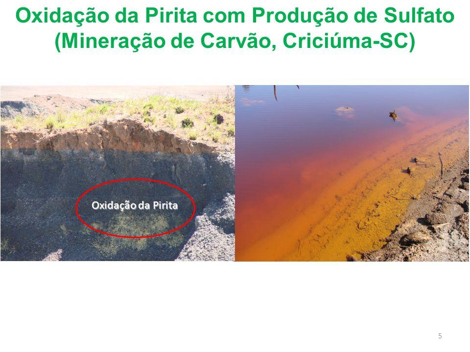 Oxidação da Pirita com Produção de Sulfato (Mineração de Carvão, Criciúma-SC) Oxidação da Pirita 5