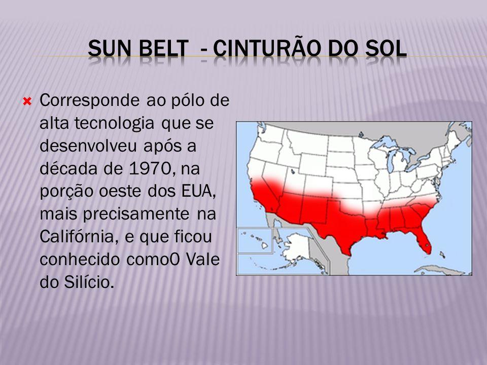 Corresponde ao pólo de alta tecnologia que se desenvolveu após a década de 1970, na porção oeste dos EUA, mais precisamente na Califórnia, e que ficou