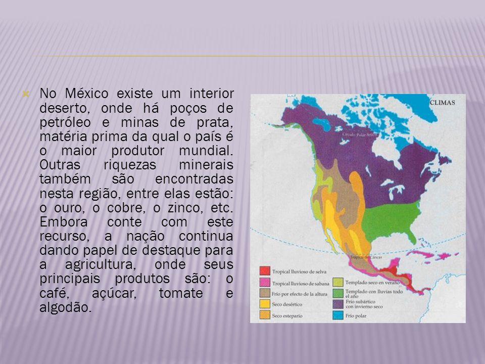 No México existe um interior deserto, onde há poços de petróleo e minas de prata, matéria prima da qual o país é o maior produtor mundial. Outras riqu