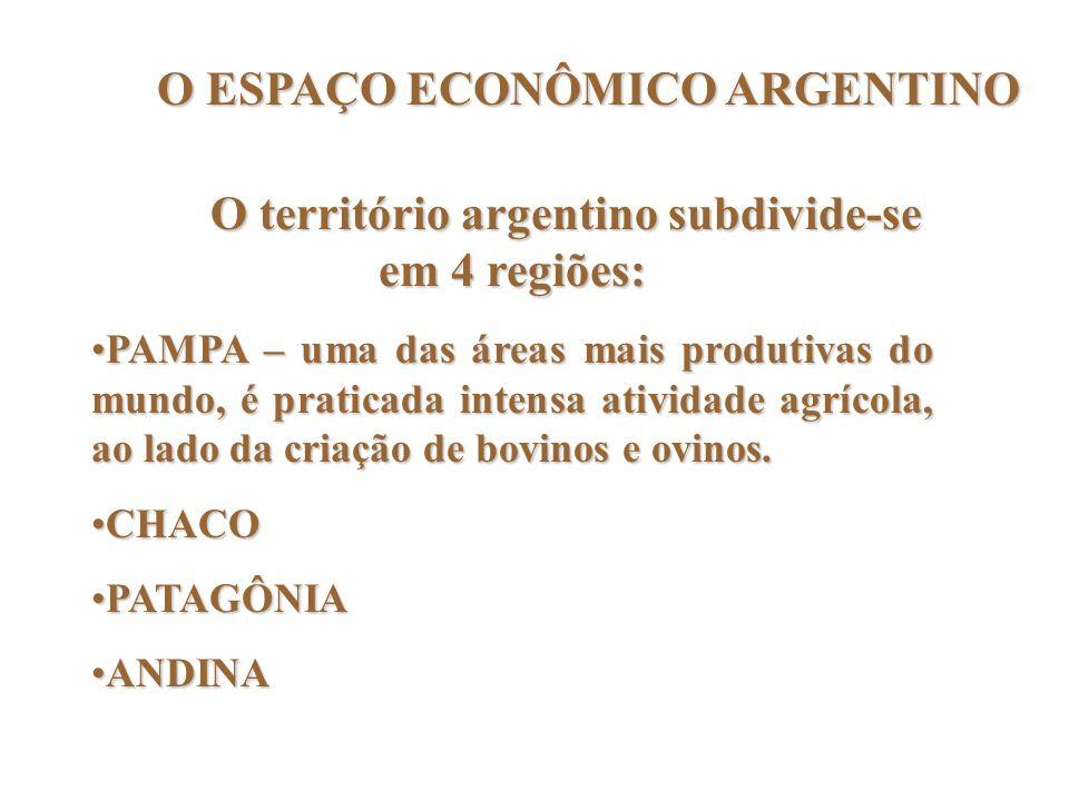 O ESPAÇO ECONÔMICO ARGENTINO O território argentino subdivide-se em 4 regiões: PAMPA – uma das áreas mais produtivas do mundo, é praticada intensa ati