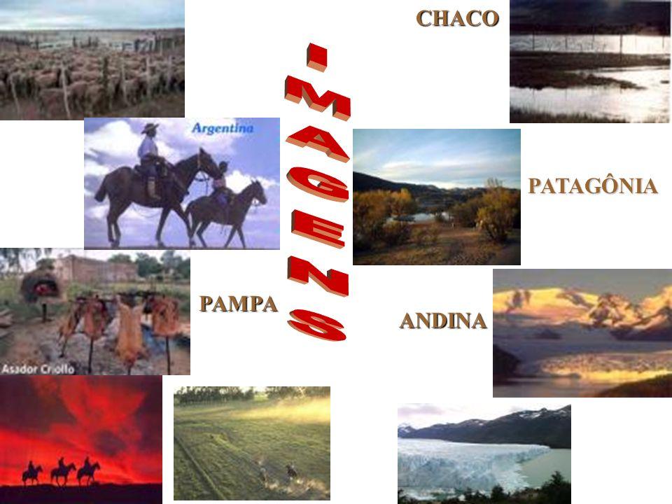 PAMPA CHACO PATAGÔNIA ANDINA