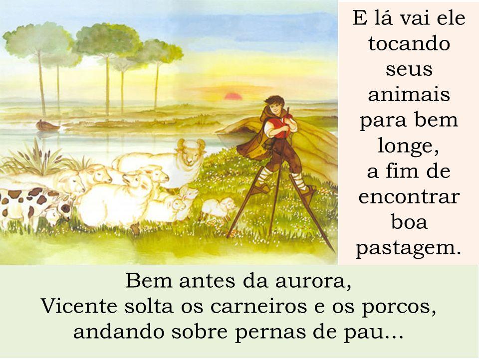 Bem antes da aurora, Vicente solta os carneiros e os porcos, andando sobre pernas de pau... E lá vai ele tocando seus animais para bem longe, a fim de