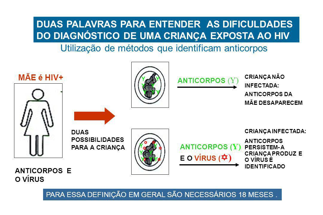 DUAS PALAVRAS PARA ENTENDER AS DIFICULDADES DO DIAGNÓSTICO DE UMA CRIANÇA EXPOSTA AO HIV MÃE é HIV+ ANTICORPOS E O VÍRUS DUAS POSSIBILIDADES PARA A CR