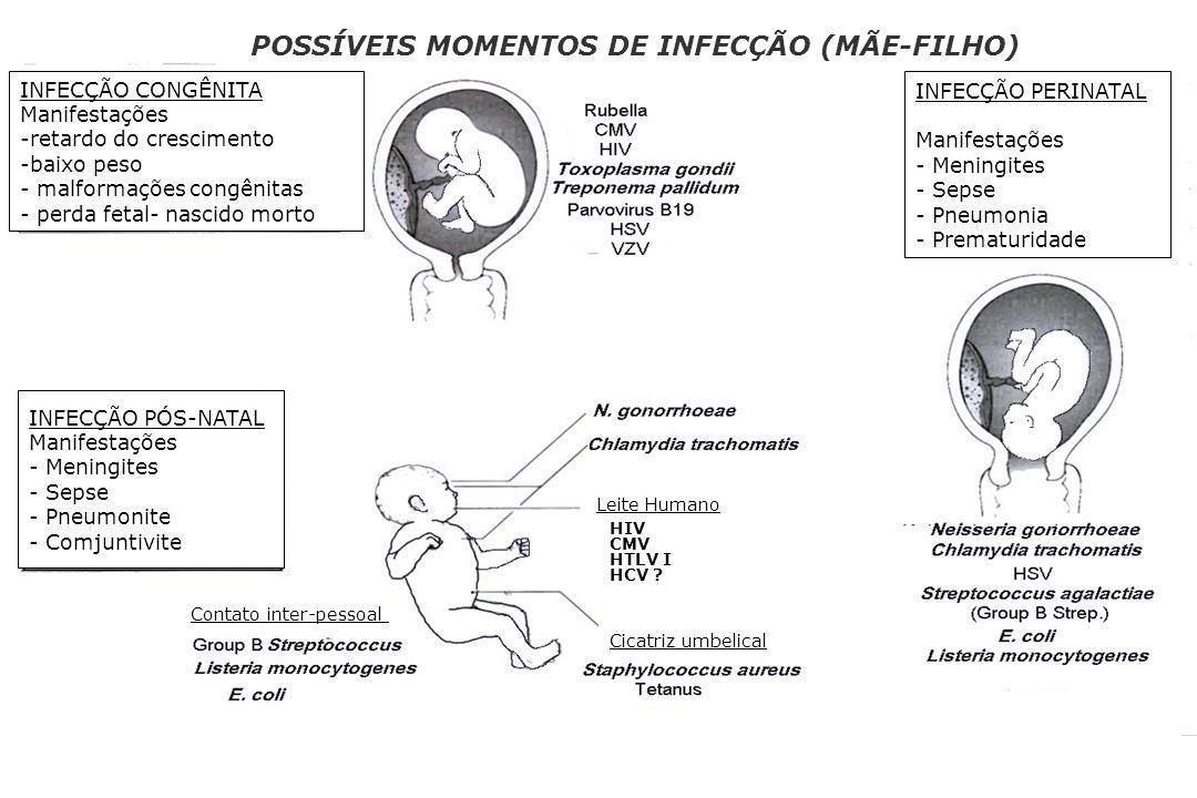INFECÇÃO CONGÊNITA Manifestações -retardo do crescimento -baixo peso - malformações congênitas - perda fetal- nascido morto INFECÇÃO PÓS-NATAL Manifes