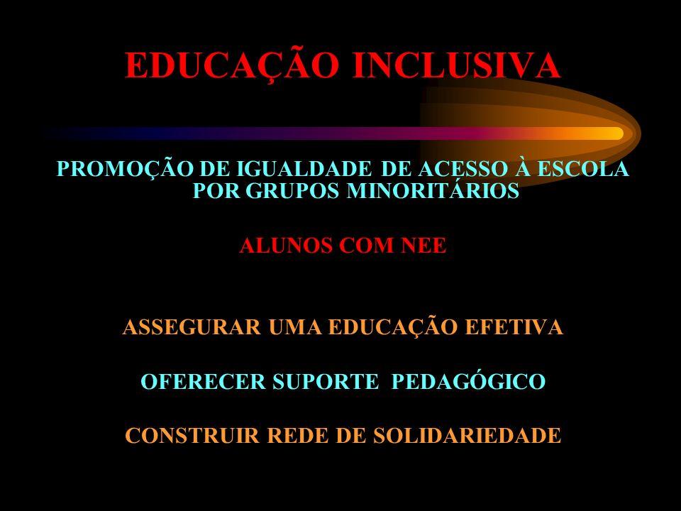 EDUCAÇÃO INCLUSIVA PROMOÇÃO DE IGUALDADE DE ACESSO À ESCOLA POR GRUPOS MINORITÁRIOS ALUNOS COM NEE ASSEGURAR UMA EDUCAÇÃO EFETIVA OFERECER SUPORTE PED