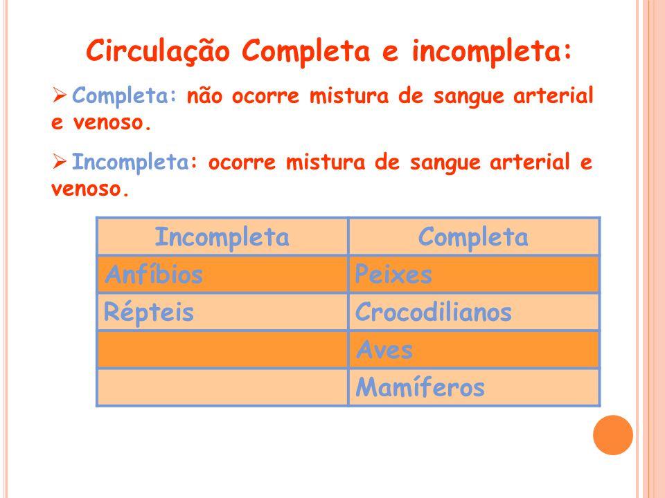 Circulação Completa e incompleta: Completa: não ocorre mistura de sangue arterial e venoso. Incompleta: ocorre mistura de sangue arterial e venoso. In