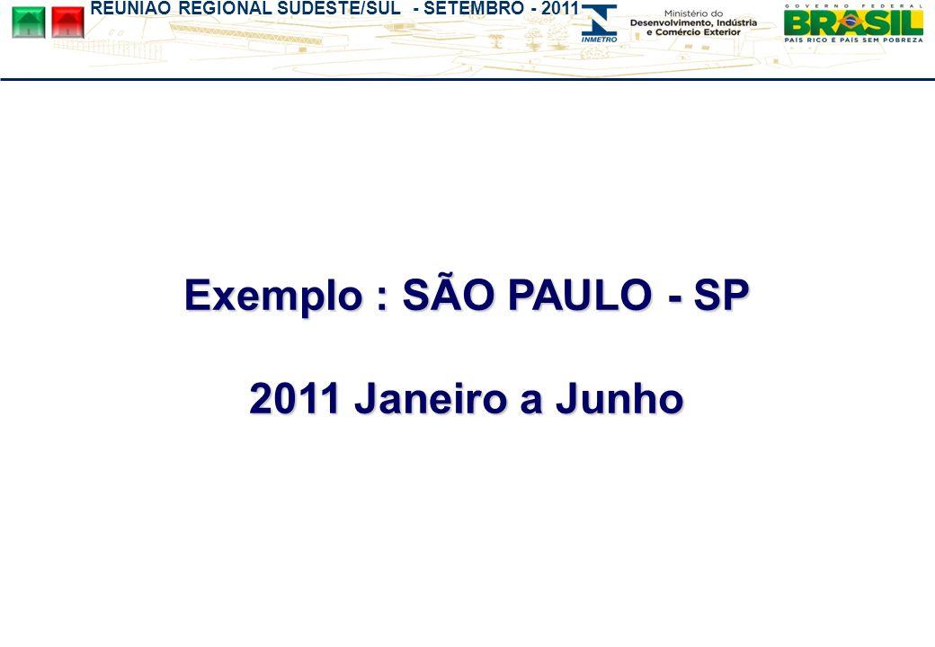 REUNIÃO REGIONAL SUDESTE/SUL - SETEMBRO - 2011 Exemplo : SÃO PAULO - SP 2011 Janeiro a Junho
