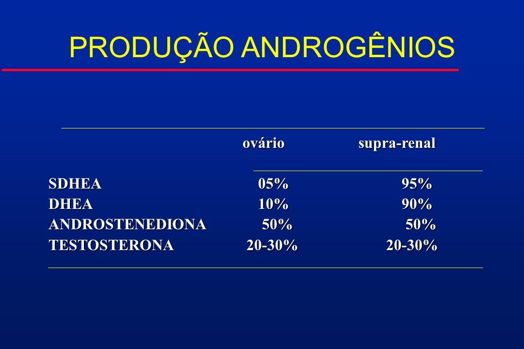 ovário supra-renal ovário supra-renal SDHEA 05% 95% DHEA 10% 90% ANDROSTENEDIONA 50% 50% TESTOSTERONA 20-30% 20-30% PRODUÇÃO ANDROGÊNIOS