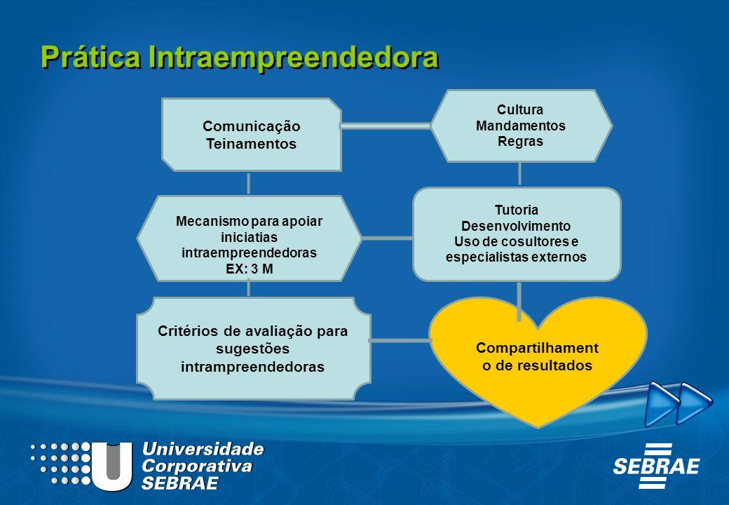 Comunicação Teinamentos Mecanismo para apoiar iniciatias intraempreendedoras EX: 3 M Cultura Mandamentos Regras Tutoria Desenvolvimento Uso de cosulto