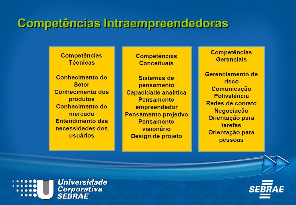 Competências Técnicas Conhecimento do Setor Conhecimento dos produtos Conhecimento do mercado Entendimento das necessidades dos usuários Competências