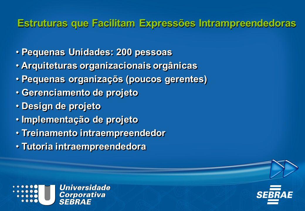 Estruturas que Facilitam Expressões Intrampreendedoras Pequenas Unidades: 200 pessoas Arquiteturas organizacionais orgânicas Pequenas organizaçõs (pou