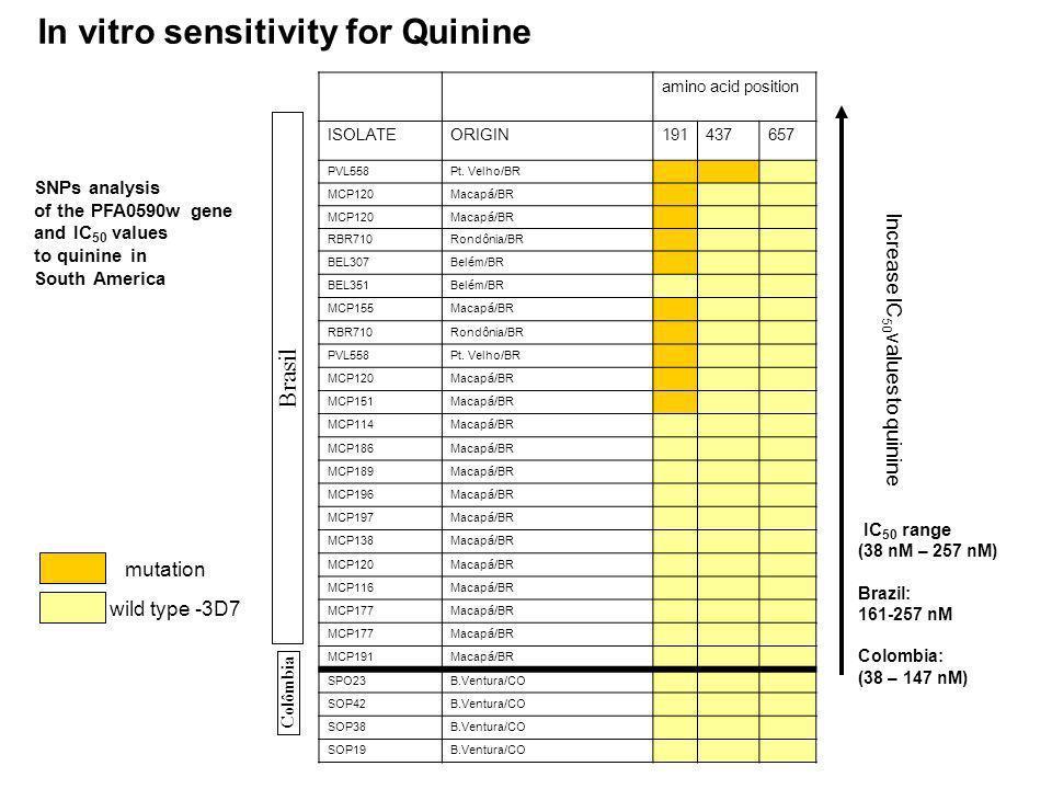 In vitro sensitivity for Quinine amino acid position ISOLATEORIGIN191437657 PVL558Pt. Velho/BR MCP120 Macap á /BR MCP120 Macap á /BR RBR710Rondônia/BR
