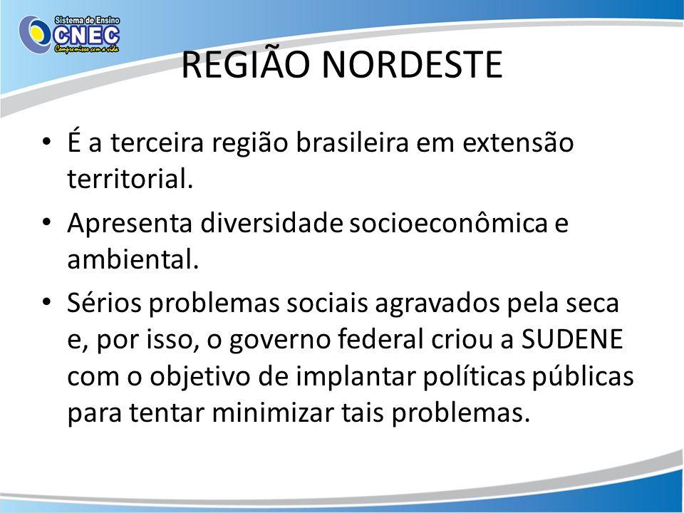 REGIÃO NORDESTE É a terceira região brasileira em extensão territorial. Apresenta diversidade socioeconômica e ambiental. Sérios problemas sociais agr