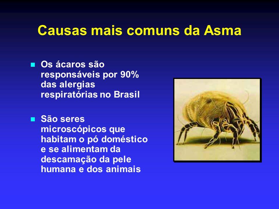 Tratamento da asma Deve ser contínuo e não apenas durante as crises.