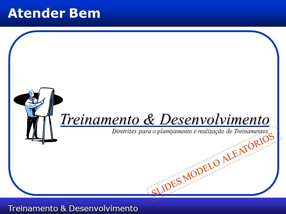 Treinamento & Desenvolvimento Treinamento & Desenvolvimento Atender Bem Treinamento & Desenvolvimento Diretrizes para o planejamento e realização de T