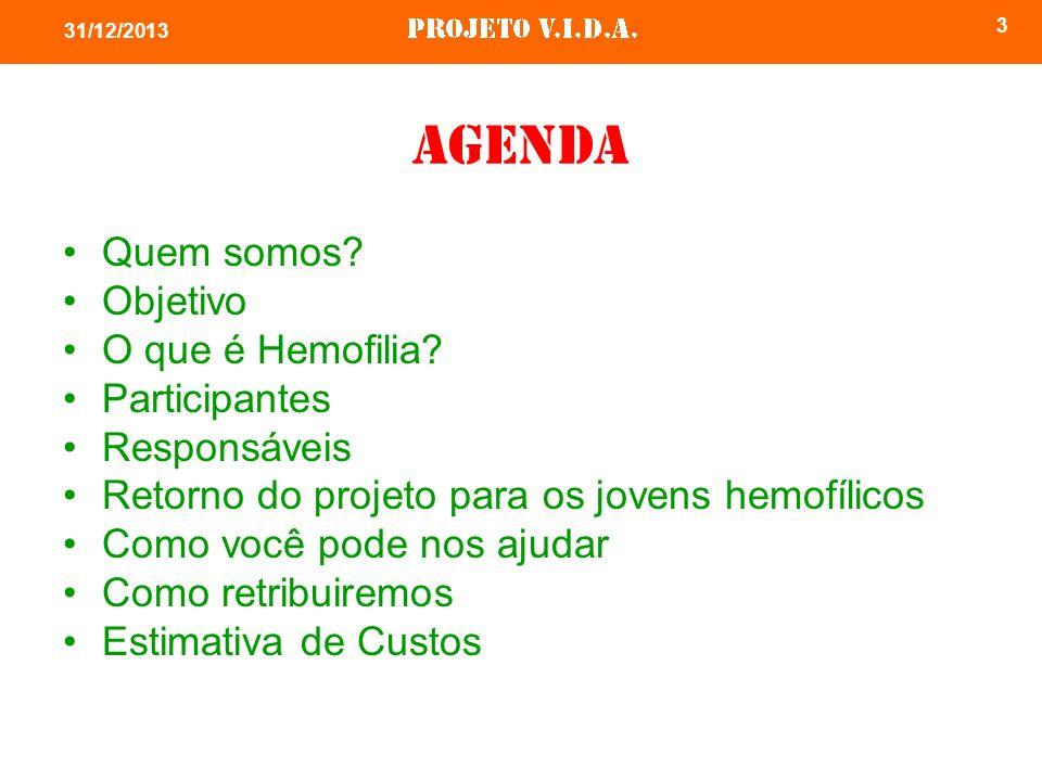 3 31/12/2013 Agenda Quem somos? Objetivo O que é Hemofilia? Participantes Responsáveis Retorno do projeto para os jovens hemofílicos Como você pode no
