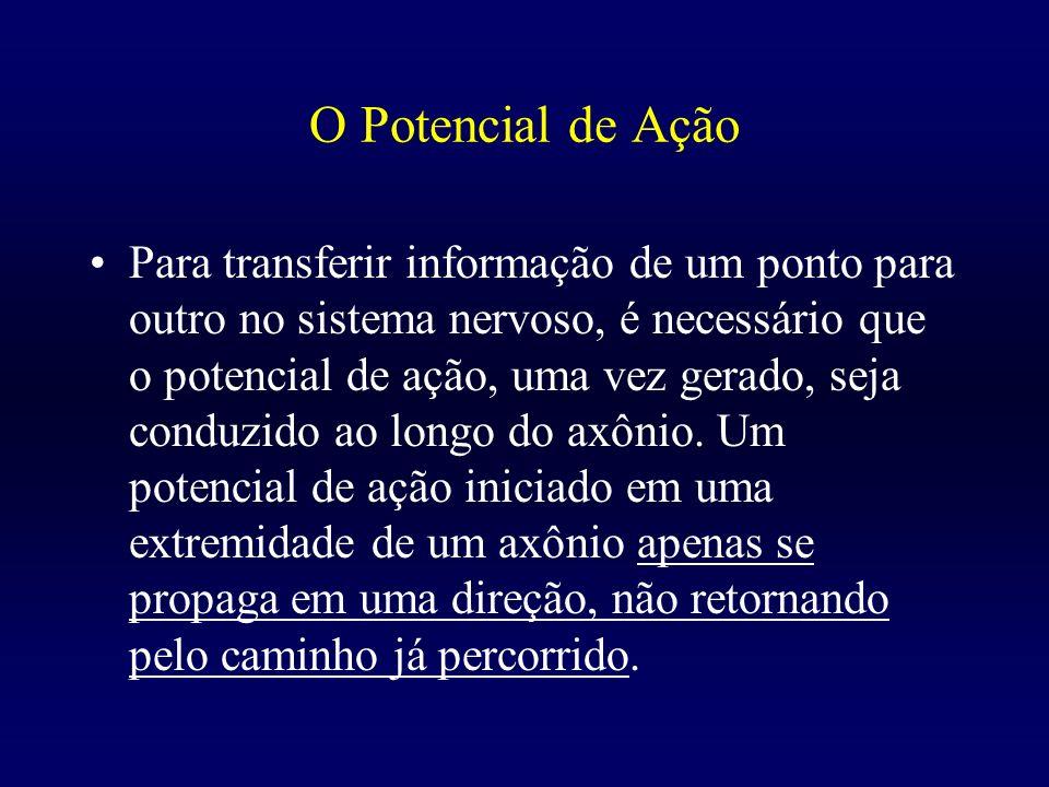 O Potencial de Ação Para transferir informação de um ponto para outro no sistema nervoso, é necessário que o potencial de ação, uma vez gerado, seja c