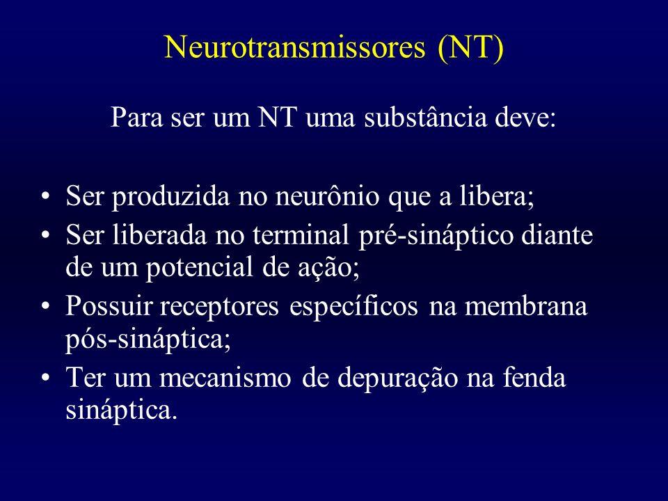 Neurotransmissores (NT) Para ser um NT uma substância deve: Ser produzida no neurônio que a libera; Ser liberada no terminal pré-sináptico diante de u