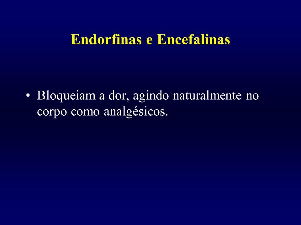 Endorfinas e Encefalinas Bloqueiam a dor, agindo naturalmente no corpo como analgésicos.