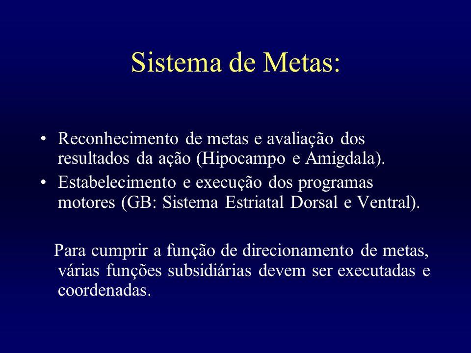 Sistema de Metas: Reconhecimento de metas e avaliação dos resultados da ação (Hipocampo e Amigdala). Estabelecimento e execução dos programas motores