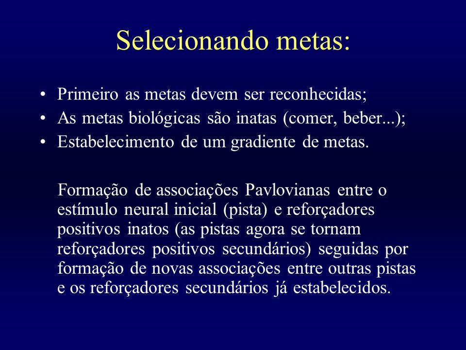Selecionando metas: Primeiro as metas devem ser reconhecidas; As metas biológicas são inatas (comer, beber...); Estabelecimento de um gradiente de met