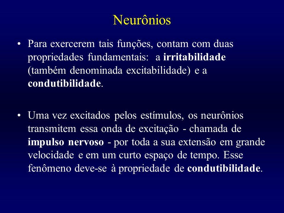 Neurônios Para exercerem tais funções, contam com duas propriedades fundamentais: a irritabilidade (também denominada excitabilidade) e a condutibilid