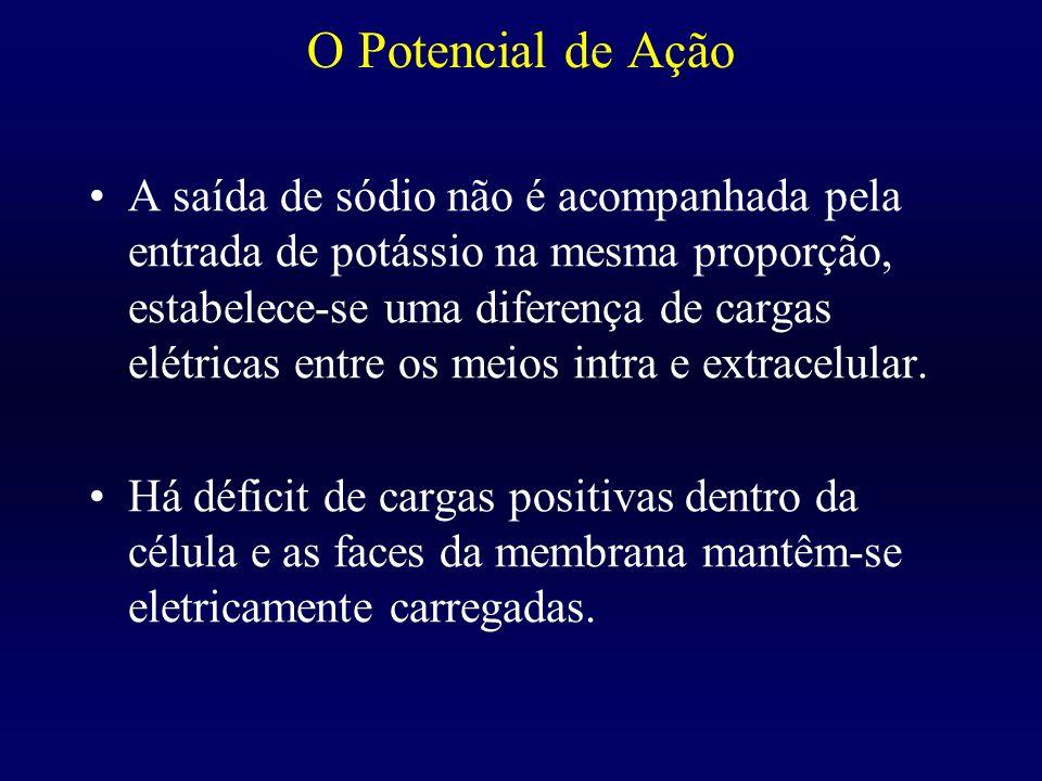 Fisiopatologia da DQ Prof. Roney Oliveira