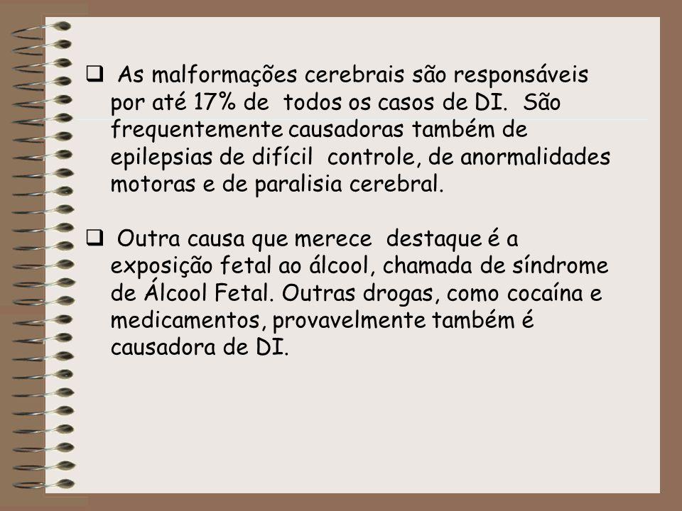 As malformações cerebrais são responsáveis por até 17% de todos os casos de DI. São frequentemente causadoras também de epilepsias de difícil controle