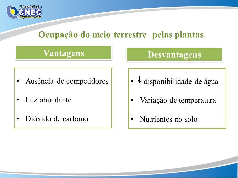 Ocupação do meio terrestre pelas plantas Vantagens Desvantagens Ausência de competidores Luz abundante Dióxido de carbono disponibilidade de água Vari