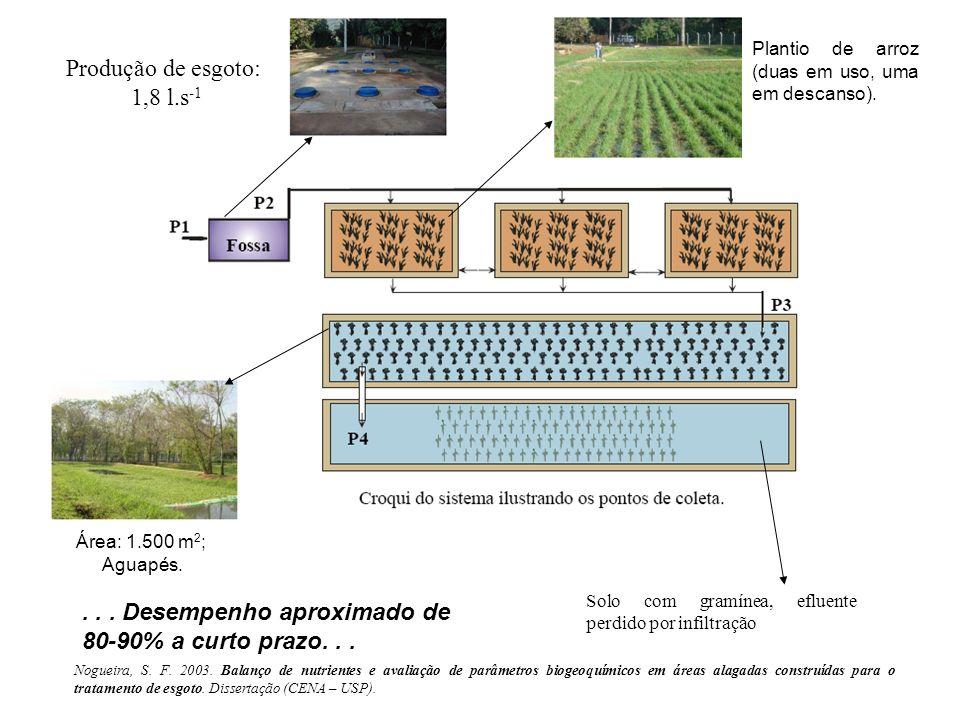 Produção de esgoto: 1,8 l.s -1 Plantio de arroz (duas em uso, uma em descanso). Área: 1.500 m 2 ; Aguapés. Solo com gramínea, efluente perdido por inf